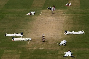 Here is a cricket pitch that has been invaded by a swarm of bees.
